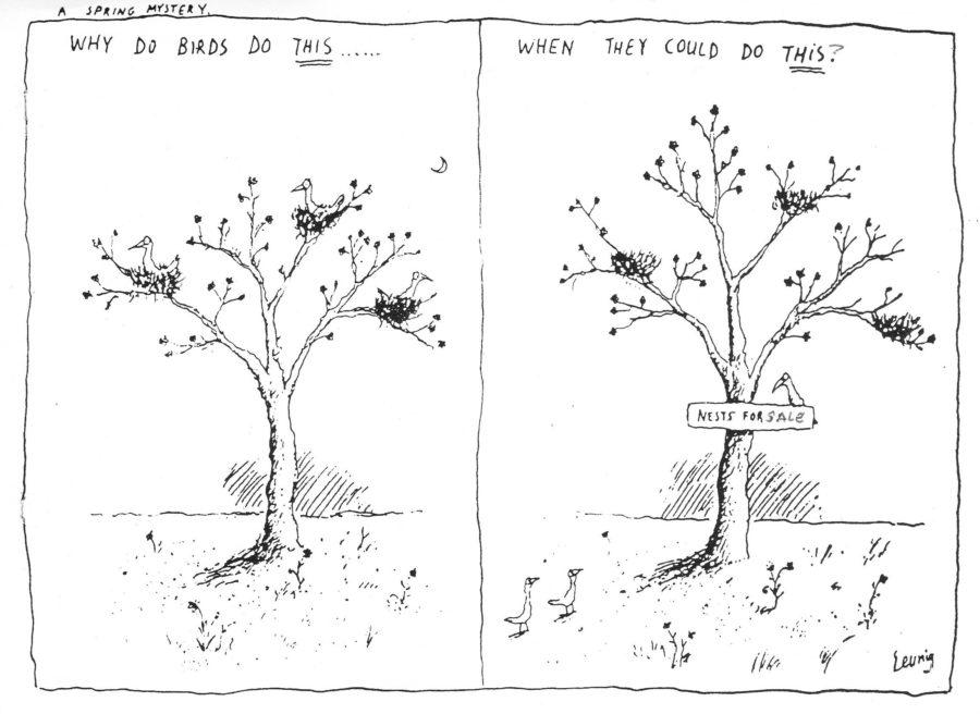 Bird rent